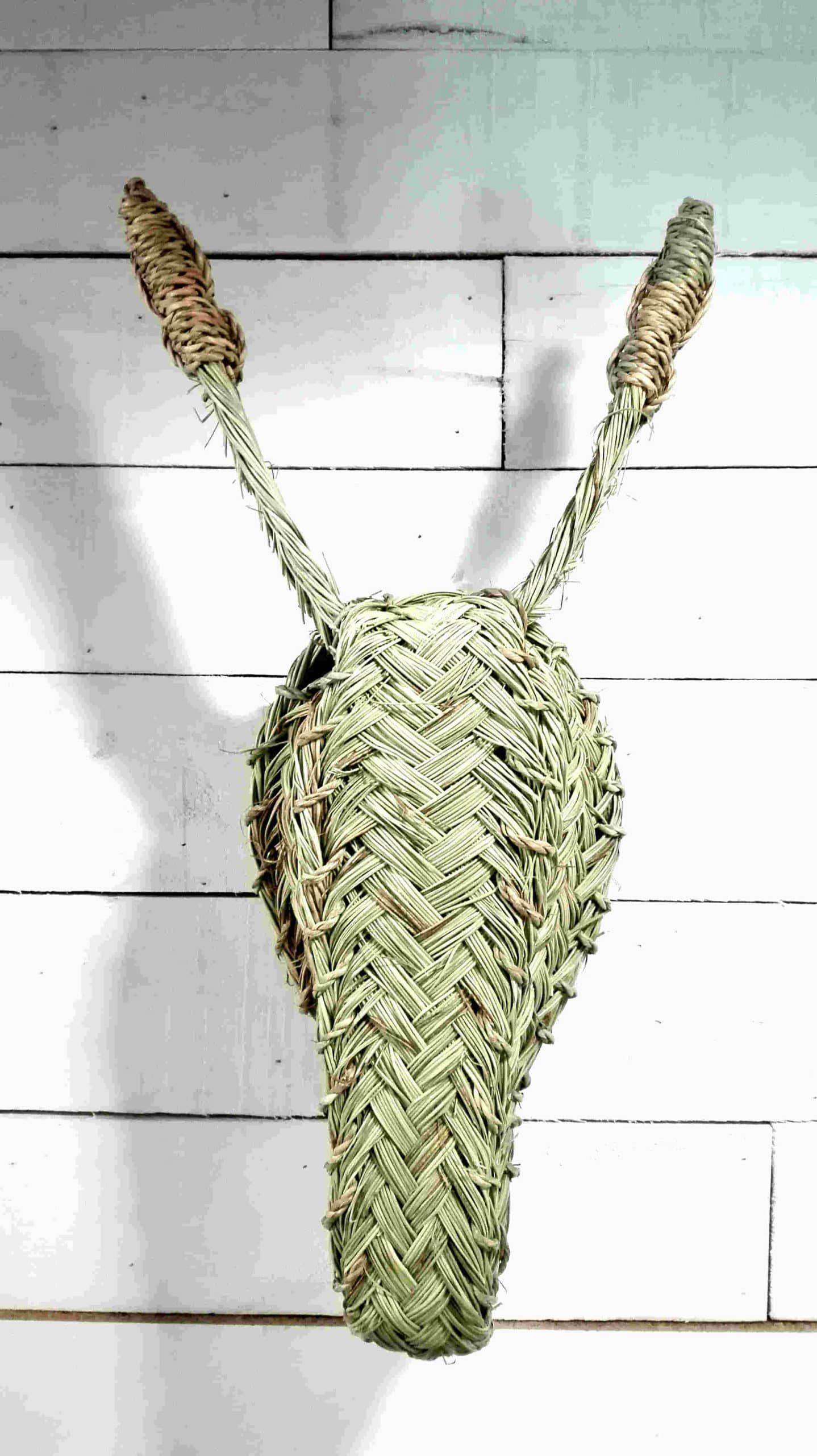 Cabeza de Burro - Artesanal